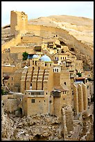 Fortified walls of the Mar Saba Monastery. West Bank, Occupied Territories (Israel)