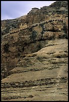 Monastery perched on the side of a steep clif. West Bank, Occupied Territories (Israel)