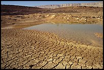Cracked mud and shallow pond, near Mitzpe Ramon. Negev Desert, Israel