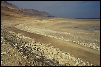 Shores of the Dead Sea. Israel ( color)