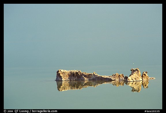 Salt formations reflected in the Dead Sea. Israel (color)