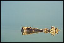 Salt formations reflected in the Dead Sea. Israel ( color)