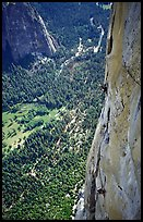 Valerio Folco and Tom McMillan on the crux pitch (second to last). El Capitan, Yosemite, California (color)