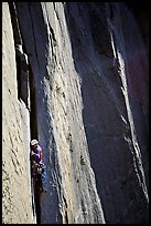 Like many, the pitch above Dolt Towe is crack climbing. El Capitan, Yosemite, California (color)