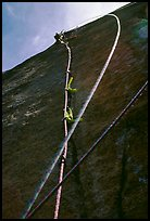 Leading the next pitch, a thin crack in the middle of nowhere