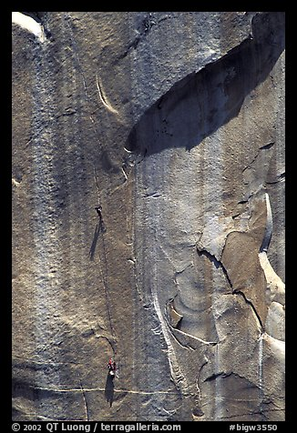 Party on  the Triple Cracks, the crux of the route. El Capitan, Yosemite, California (color)