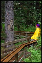 Hiker looking at a tree carved by native Tlingit indians, Bartlett Cove. Glacier Bay National Park, Alaska (color)