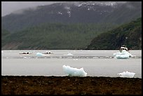 Taxi boat, kayaks, and icebergs near McBride Glacier. Glacier Bay National Park, Alaska