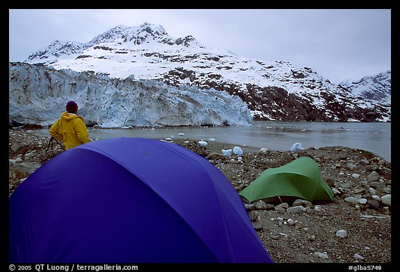 Camp in front of Lamplugh Glacier. Glacier Bay National Park, Alaska (color)