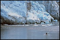 Kayaker at the base  of Lamplugh Glacier. Glacier Bay National Park, Alaska