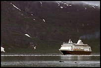 Cruise ship, East arm. Glacier Bay National Park, Alaska (color)