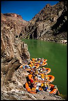 Rafts moored near month of Clear Creek canyon. Grand Canyon National Park, Arizona ( color)