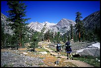 Backpackers on the John Muir Trail. Kings Canyon National Park, California