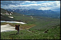 Backpackers walking down on a carpet of alpine flowers towards Twin Lakes. Lake Clark National Park, Alaska
