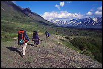 Backpackers with big  packs walking on the tundra. Lake Clark National Park, Alaska