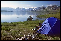 Camp above Twin Lakes. Lake Clark National Park, Alaska