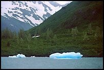Icebergs in Portage Lake, at sea level. Alaska (color)