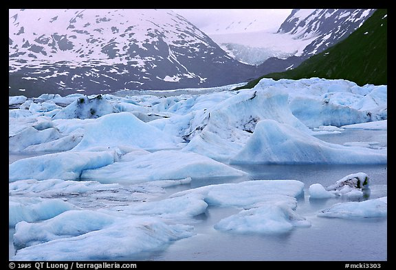 Icebergs in Portage Lake. Alaska (color)