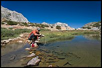 Man filtering water from stream, John Muir Wilderness. Kings Canyon National Park, California