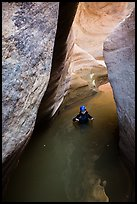 Woman standing in waist-high pool in Pine Creek Canyon. Zion National Park, Utah ( color)