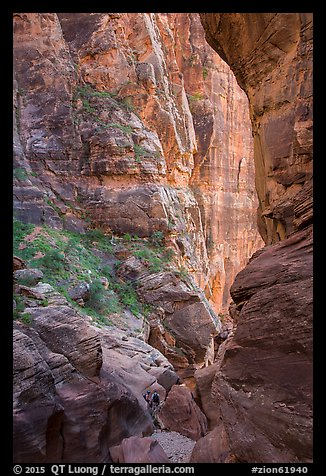 Hikers dwarfed by canyon walls, Pine Creek Canyon. Zion National Park, Utah (color)