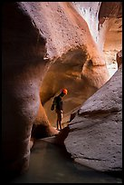 Man between glowing canyon walls, Pine Creek Canyon. Zion National Park, Utah ( color)
