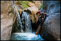 Hiker downclimbs on log along waterfall, Orderville Canyon. Zion National Park, Utah ( color)
