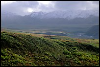 Tundra and Alaska Range near Sable pass. Denali National Park ( color)