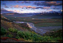 Tundra, braided rivers, Alaska Range in the evening from Polychrome Pass. Denali National Park, Alaska, USA.
