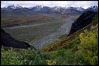 Tundra, wide valley with rivers, Alaska Range in the evening from Polychrome Pass. Denali National Park, Alaska, USA. (color)