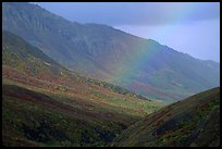 Rainbow and mountains near Sable Pass. Denali National Park, Alaska, USA. (color)