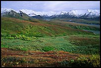 Tundra and Alaska Range near Eielson. Denali National Park, Alaska, USA. (color)