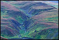 River cut in tundra foothills near Eielson. Denali National Park, Alaska, USA. (color)