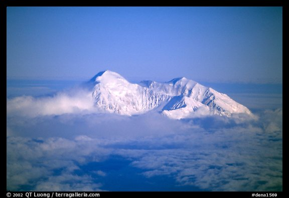 Mt Mc Kinley emerges from a sea of clouds. Denali National Park, Alaska, USA.