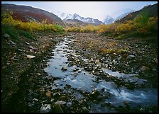 Creek near Polychrome Pass. Denali National Park ( color)