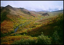 Gentle valley and river with low vegetation. Denali National Park ( color)