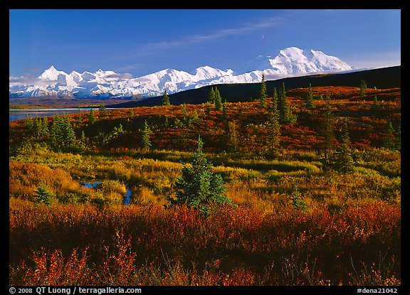 Tundra and Mt McKinley range, late afternoon light. Denali  National Park (color)