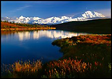 Mt Mc Kinley above Wonder Lake, evening. Denali National Park, Alaska, USA. (color)