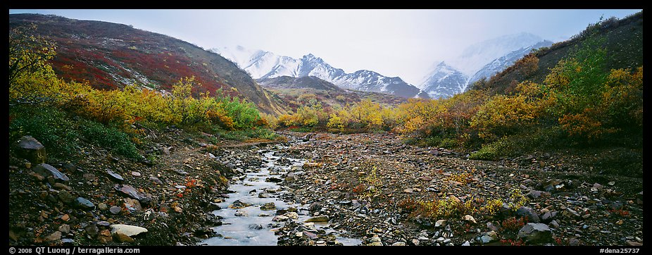 Rocky creek, trees, and snowy mountains in autumn. Denali National Park (color)