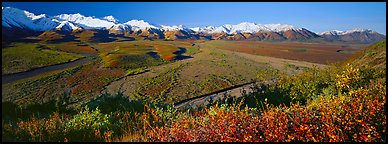 Alaskan mountain landscape with wide river valley. Denali  National Park (Panoramic color)