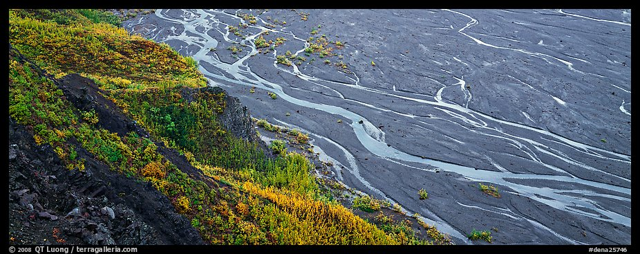 Wide braided river and aspens in autumn. Denali National Park (color)