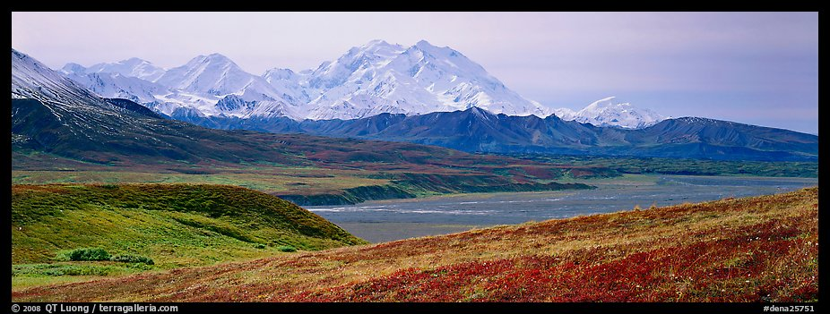 Mount McKinley rises above autumn tundra. Denali  National Park (color)