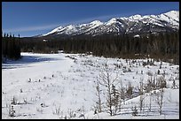 Riley Creek in winter. Denali National Park, Alaska, USA. (color)