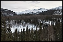 Riley Creek drainage and mountains in winter. Denali National Park, Alaska, USA. (color)