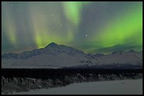 Northern lights above Mt McKinley. Denali National Park, Alaska, USA.