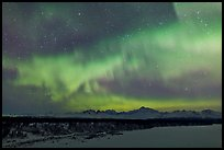 Aurora and stars above Alaska range. Denali National Park, Alaska, USA. (color)