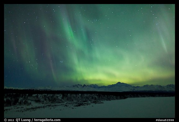 Northern lights  above Alaska range. Denali National Park (color)