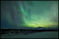 Northern lights  above Alaska range. Denali National Park, Alaska, USA.