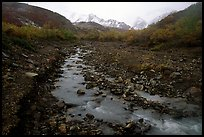 Creek near Polychrome Pass. Denali  National Park, Alaska, USA.
