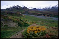 Alaska Range from Eielson. Denali National Park, Alaska, USA. (color)